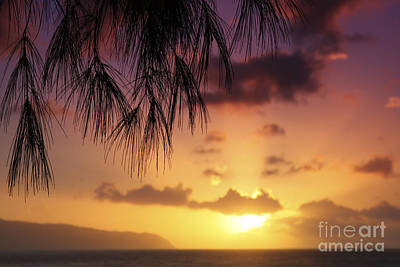 Colorful Oahu Sunset Art Print