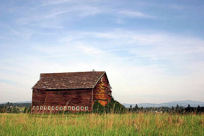 Photograph - Colorful Old Barn by Craig Strand