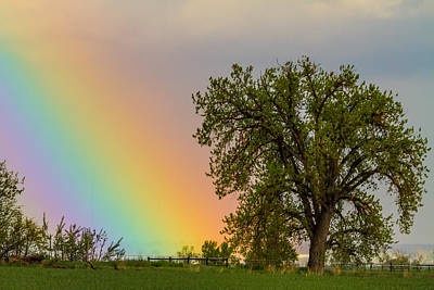 Photograph - Colorful Optic Rainbow Sky by James BO Insogna