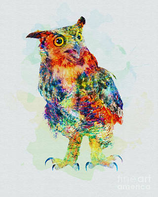 Mixed Media - Colorful Owl Art by Olga Hamilton