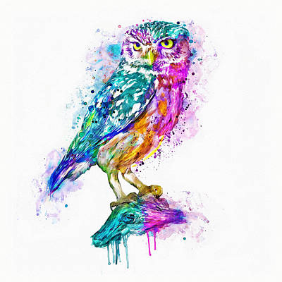 White Background Mixed Media - Colorful Owl by Marian Voicu