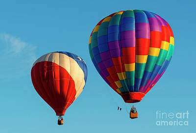 Colorful Pair Art Print by Mike Dawson