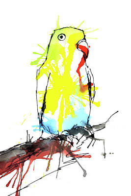 Drawing - Colorful Parrot by ZileArt