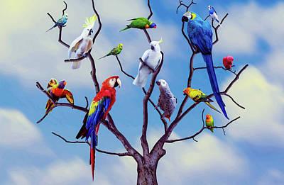 Photograph - Colorful Parrots Art by Wall Art Prints