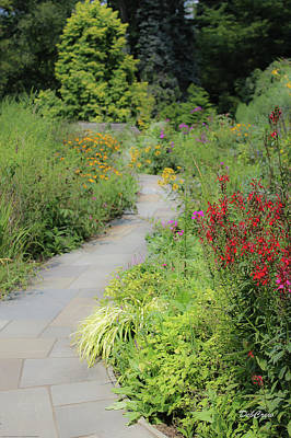 Photograph - Colorful Pathway by Deborah  Crew-Johnson