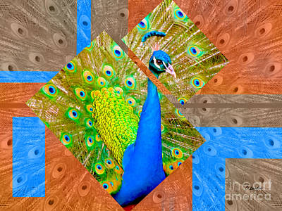 Photograph - Colorful Peacock Rectangular Version by Claudia Ellis