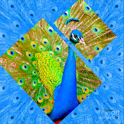 Photograph - Colorful Peacock Square by Claudia Ellis
