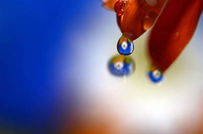 Colorful Reflective Water Drops Art Print by Laura Mountainspring