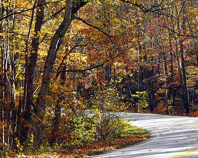 Photograph - Colorful Road by John Bushnell