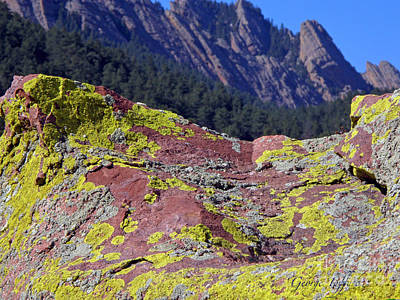 Photograph - Colorful Rock Mesatrail by George Tuffy