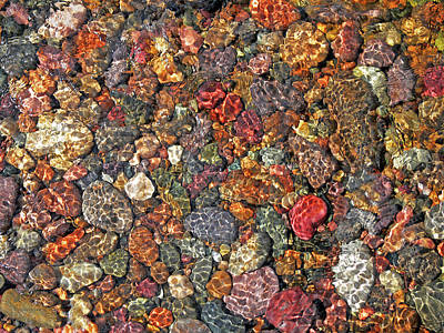 Colorful Rocks In Stream Bed Montana Art Print by Jennie Marie Schell