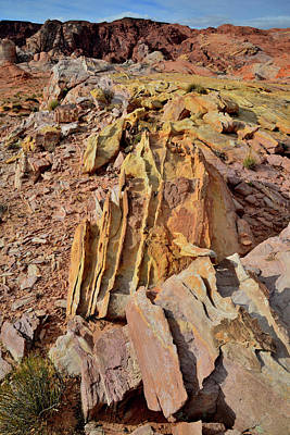 Photograph - Colorful Sandstone Fins In Valley Of Fire by Ray Mathis