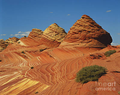 Colorful Sandstone In Arizona Art Print by Adam Jones