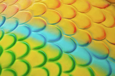 Colorful Contemporary Photograph - Colorful Scales by Adam Romanowicz