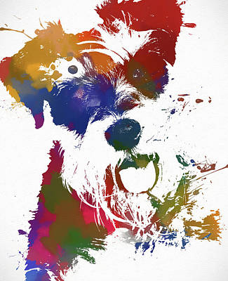 Painting - Colorful Schnauzer by Dan Sproul