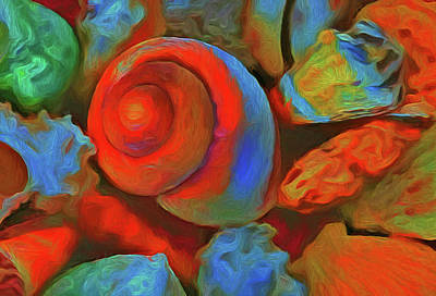 Colorful Sea Shells Art Print