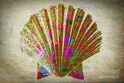 Photograph - Colorful Shell by Lynn Sprowl