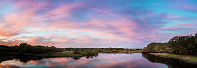 Alligator Photograph - Colorful Sky by Marvin Spates