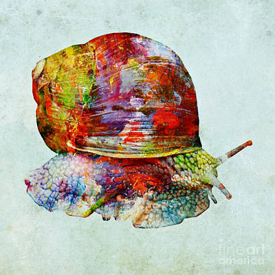 Mixed Media - Colorful Snail Art  by Olga Hamilton