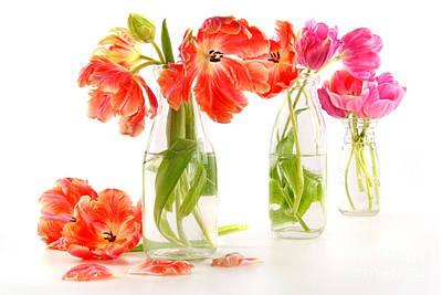 Colorful Spring Tulips In Old Milk Bottles Art Print by Sandra Cunningham
