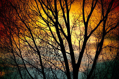 Colorful Sunset Silhouette Art Print by James BO  Insogna