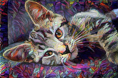 Digital Art - Colorful Tabby Kitten by Peggy Collins