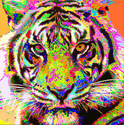 Painting - Colorful Tiger by Samuel Majcen