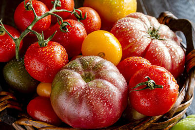 Photograph - Colorful Tomatoes by Teri Virbickis