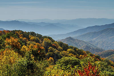 Photograph - Colorful Trees And Haze In The Smokies by Teri Virbickis