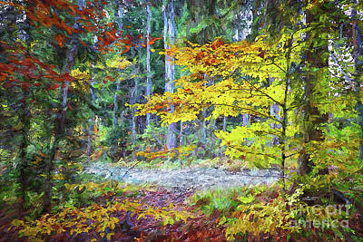 Photograph - Colorful Trees by Jutta Maria Pusl