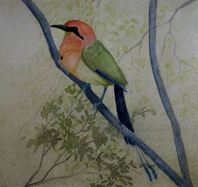 Colorful Tropical Bird Original by William Patterson