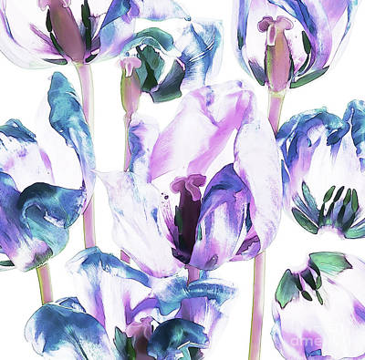 Colorful Tulips And Petals Art Print by Iren Udvarhazi