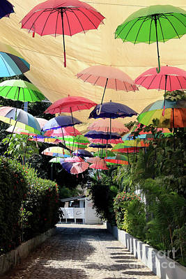 Photograph - Colorful Umbrellas by Teresa Zieba