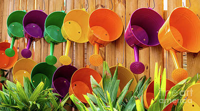 Photograph - Colorful Watering Cans by Cathy Donohoue