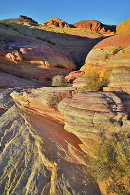 Animal Portraits Royalty Free Images - Colorful Waves of Sandstone in Pastel Canyon, Valley of Fire Royalty-Free Image by Ray Mathis
