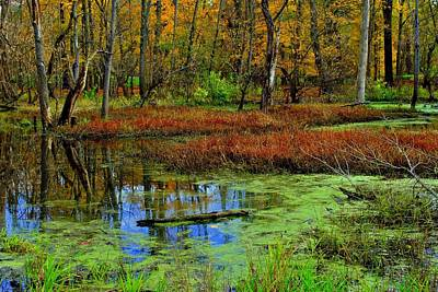 Photograph - Colorful Wetlands by Frozen in Time Fine Art Photography