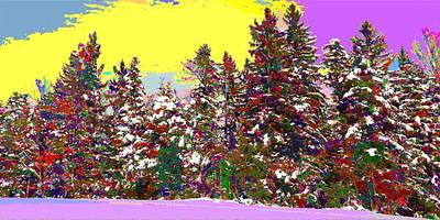 Painting - Colorful Winter Forest by Samuel Majcen