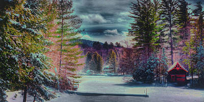 Print featuring the photograph Colorful Winter Wonderland by David Patterson