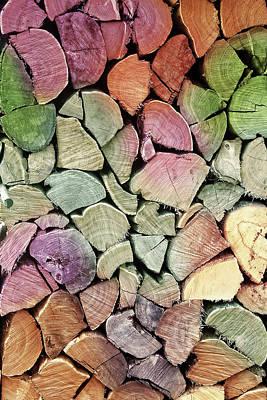 Susann Serfezi Digital Art - Colorful Wood by AugenWerk Susann Serfezi