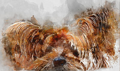 Yorkshire Terrier Watercolor Painting - Colorful Yorkshire Terrier Dog Portrait - By Diana Van by Diana Van