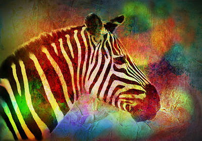 Painting - Colorful Zebra by Lilia D