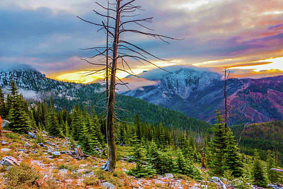Photograph - Colorfull Morning by Jason Brooks