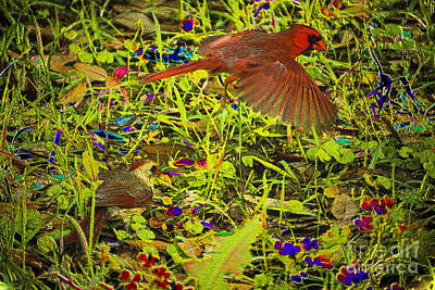 Photograph - Coloring Nature by Kim Pate