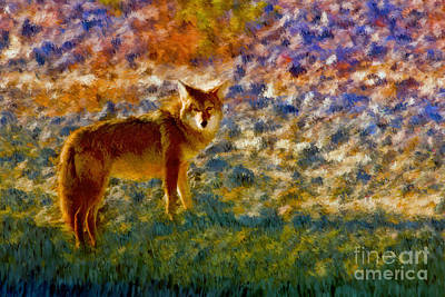 Photograph - Colorized Death Valley Coyote by Blake Richards