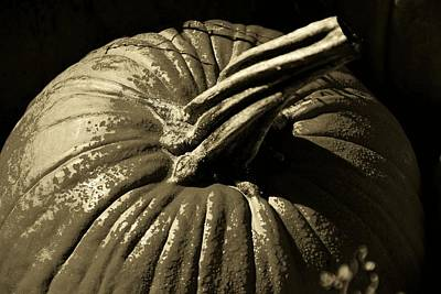 Photograph - Colorless Pumpkin by John Schneider