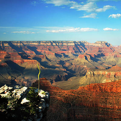 Photograph - Colors And Depth Of Grand Canyon - Square Format by Gregory Ballos