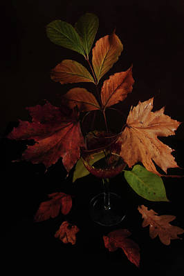 Winetasting Photograph - Colors In The Glass by Randi Grace Nilsberg