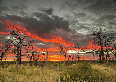 Photograph - Colors Of A Mesa Verde Sunset by Kunal Mehra