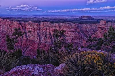 Photograph - Colors Of Dusk  by Jaquita Watters