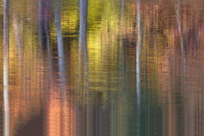 Photograph - Colors Of Fall 04 by Jim Dollar